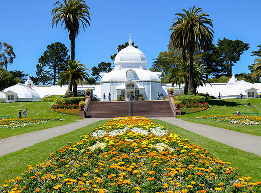 Yellow flowers in front of San Francisco Conservatory under clear blue sky