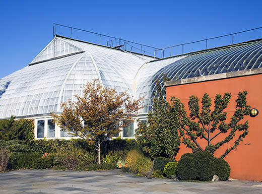 A daytime view of the exterior of the Garfield park conservatory in Chicago with green trees and shrubbery and a clear, blue sky