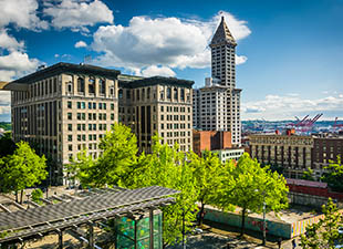 Buildings are shown in a skyline view of Seattle's Pioneer Square, with bright green leafy trees in the foreground and a blue sky with fluffy clouds in the background