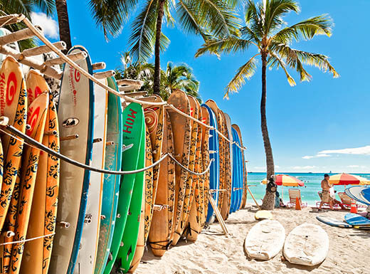 A line-up of multi-colored surf boards sit on the white sand at Waikiki Beach, with palm trees and a bright blue sky in the background in Honolulu, Hawaii