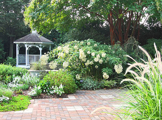 Lush green trees and bushes with different kinds of blooming white flowers are pictured, with a white gazebo in the background at the JC Raulston Arboretum at North Carolina State University on a spring day