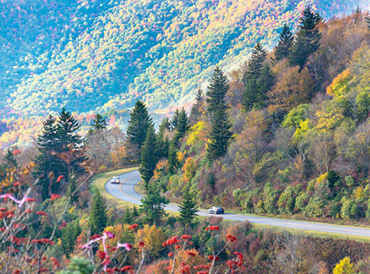 A view looking down on the Blue Ridge Parkway and surrounding trees on a beautiful autumn afternoon.