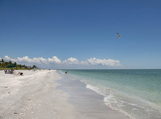 View of the beach on Sanibel Island, Florida, during a clear, sunny day.