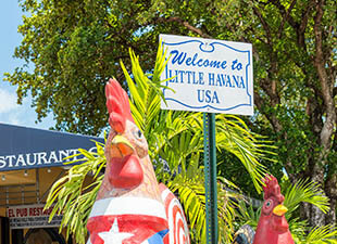 Outdoor mascot at Little Havana restaurant; rooster wearing American flag outfit