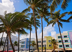 View of colorful art deco buildings on Ocean Boulevard with palm trees in the foreground on Miami Beach, Florida.
