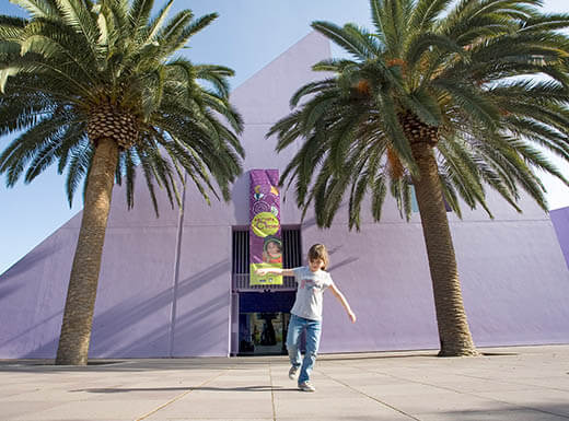 Palm trees and young boy outside Children's Discovery Museum of San Jose, California on sunny day