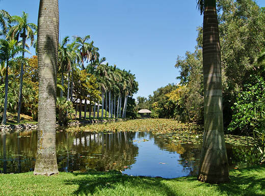 The inland waterway at Bonnet House Museum in Fort Lauderdale during daytime is lined with palm trees under a clear blue sky with a thatched roof building at the end of the waterway