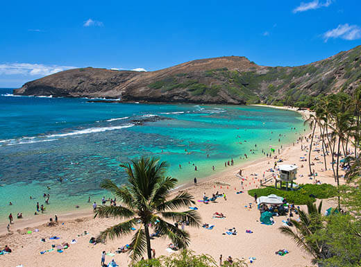 Aerial photo of snorkeling paradise Hanauma Bay in Oahu, Hawaii on a sunny day with beachgoers lounging in the sand and swimming on the shore