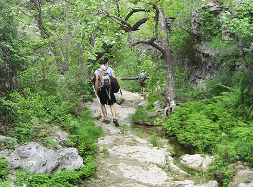 Hikers with backpacks explore the great outdoors on a rocky path alongside a small creek, surrounded by lush greenery, at Reimers Ranch Park in Austin, Texas on an overcast morning.