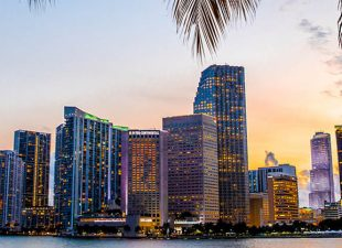 Miami Florida skyline and bay at sunset seen through palm trees