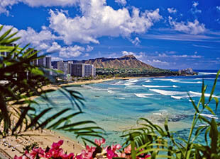 View of clear blue waters on Waikiki Beach, HI and diamond head on a sunny day under blue sky and white clouds with palm fronds and pink flowers in the foreground
