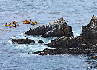 Group of yellow 2-person kayaks in ocean near rocks in San Jose, California on a sunny day