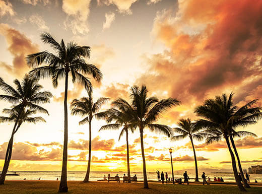 A golden sunset peeks through clouds behind palm trees in Honolulu, Hawaii on a summer evening.