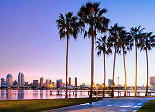 Palm trees and walkway stretch the shoreline in San Diego at sunrise