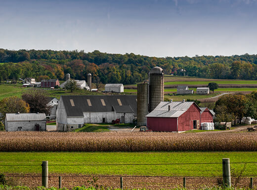 A working Amish farm in Lancaster County, Pennsylvania on a sunny day in early autumn with a picturesque red barn surrounded by crop fields in the background.