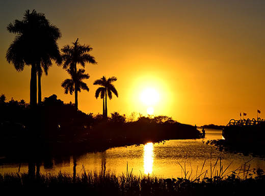 Yellow and orange sunset in Everglades National Park shows palm trees and tall grasses silhouetted against the sky, with the sun reflecting in the water.