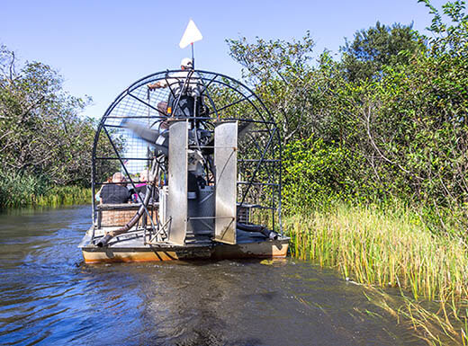Back view of an airboat floating in the water near tall grass and brush in Everglades National Park in Florida.