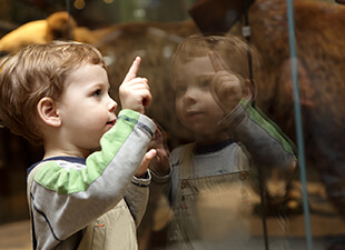 Young boy in a children's museum.