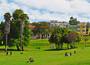 Distant view of people enjoying an outdoor park in San Francisco on a sunny day.