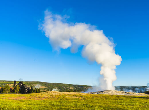 A view of the geyser Old Faithful shooting hot water into the air on a summer morning under a blue sky at Yellowstone National Park.