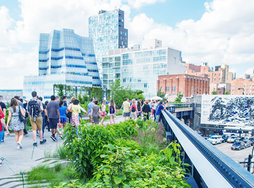 The outdoor High Line walkway and public park in New York City on a clear and busy morning.