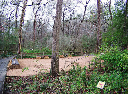 Groupings of trees and picnic area at the Houston Arboretum and Nature Center on a partly cloudy morning.