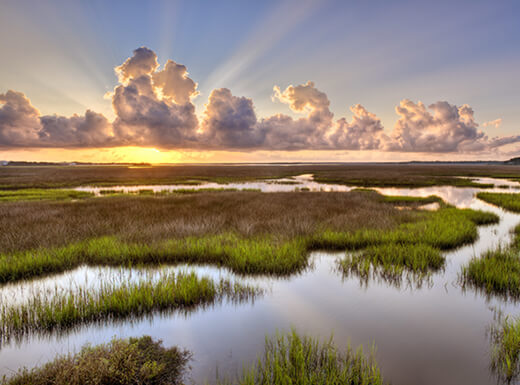 Panoramic daytime view of Timucuan Ecological and Historical Preserve near Jacksonville, Florida, shows grass floating in wetlands with clouds and the early sunrise in the background.